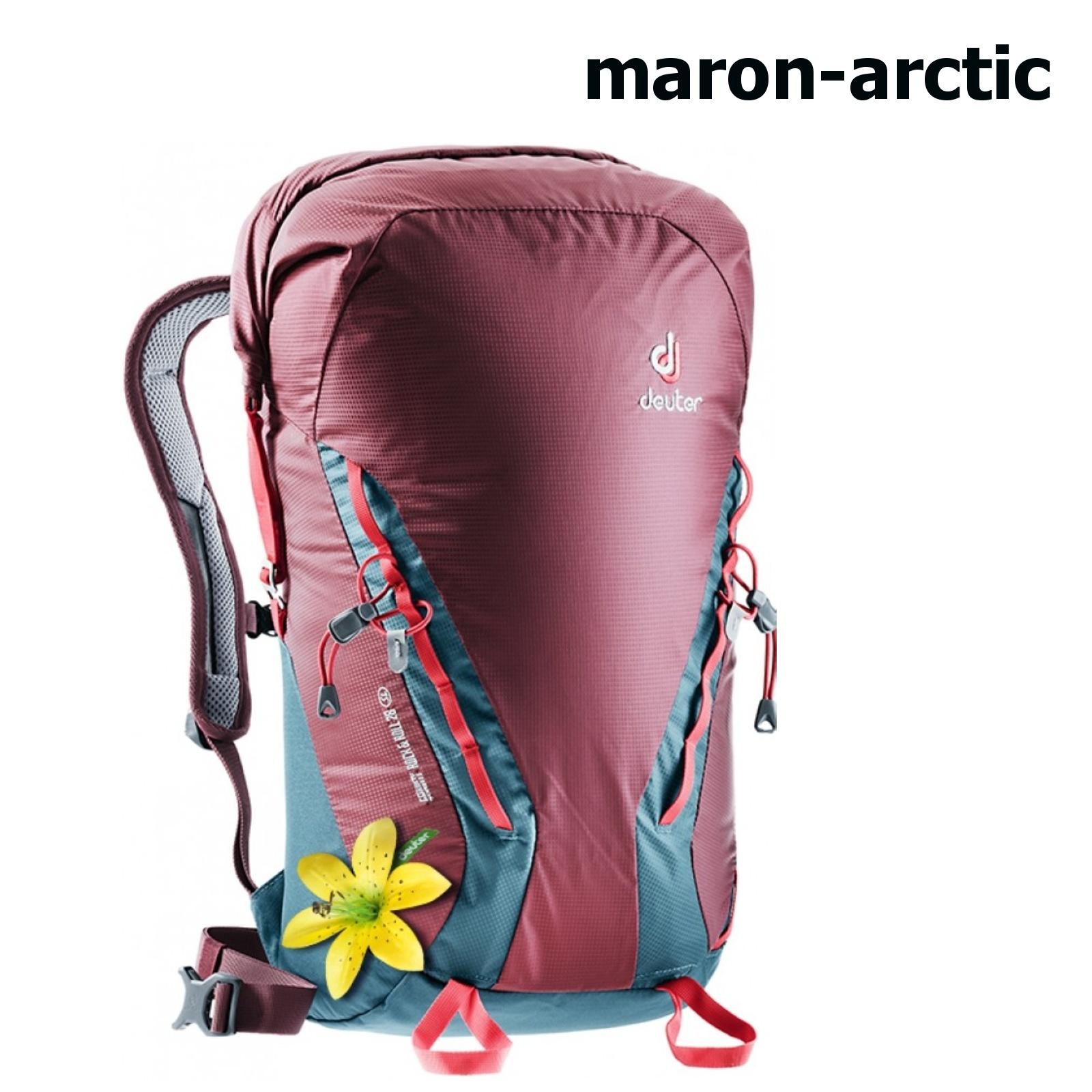 Deuter Gravity Rock&Roll 28 SL maron arctic